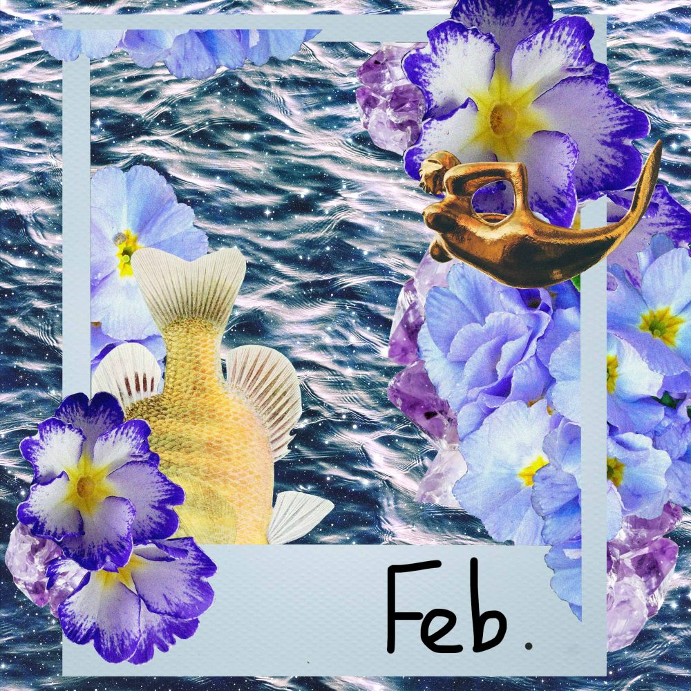 February Horoscopes